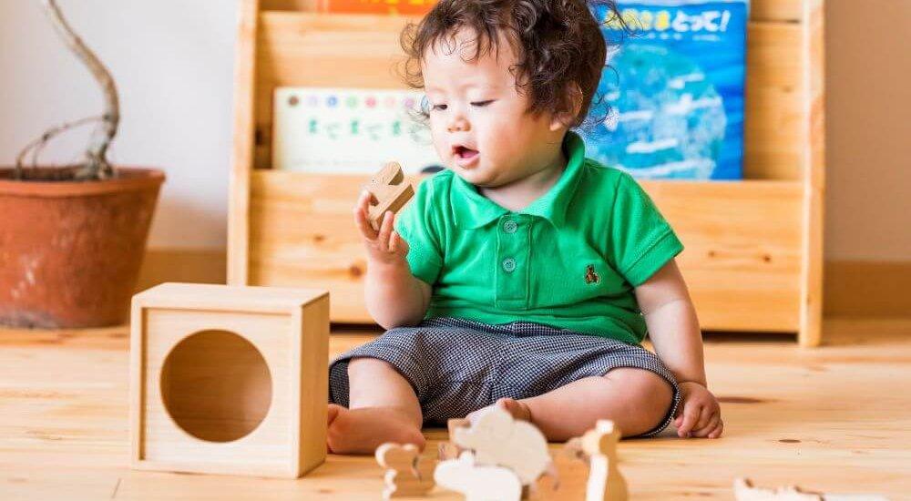 知育玩具のカテゴリ写真